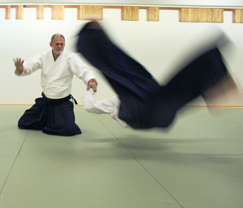 Sensei Michael Sheahon